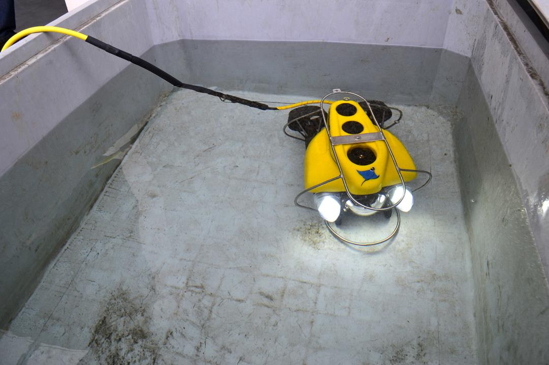 inspection_capabilties_rov_innovation_trac